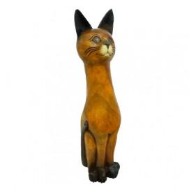 Кот манго прямой (км-32)