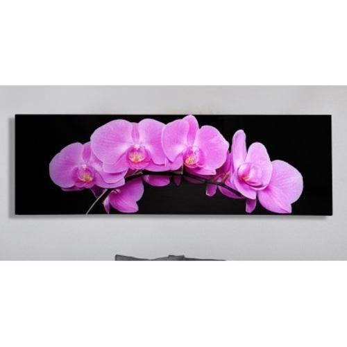 Картина Pink Orchidee 140x45cm (Z35985) фиолетовая Invicta