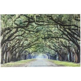 Картина Trees 120x80cm 57843 Signal 2020