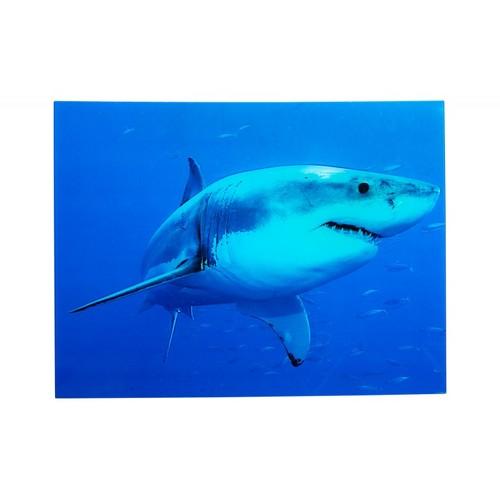 Картина Shark 60x80cm синяя Hai Glas/ 37414 Invicta