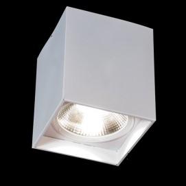 Накладной светодиодный точечный светильник 50W DB-SS225-COB-50W-W белый Diasha